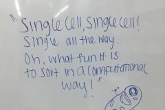 singlecells