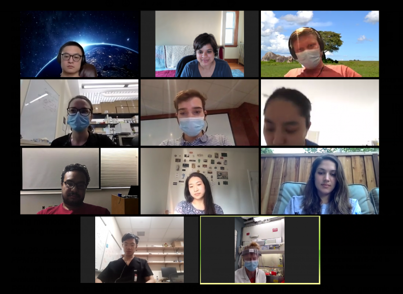 virtual_labmeeting